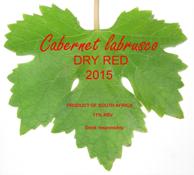 Cabernet_labrusco_wine_2015_label